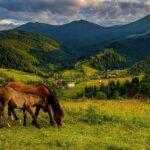 10 достопримечательностей Украинских Карпат
