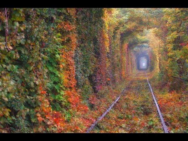 Туннель любви, Клевань, Ровенская область
