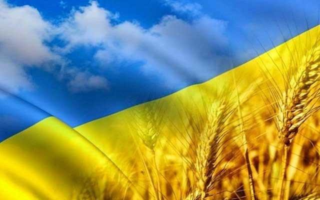 Украинская символика: желто - синий флаг