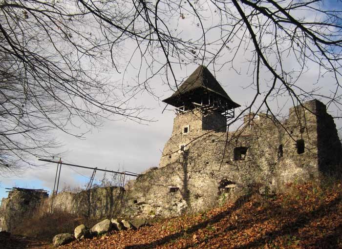 История Невицкого замка